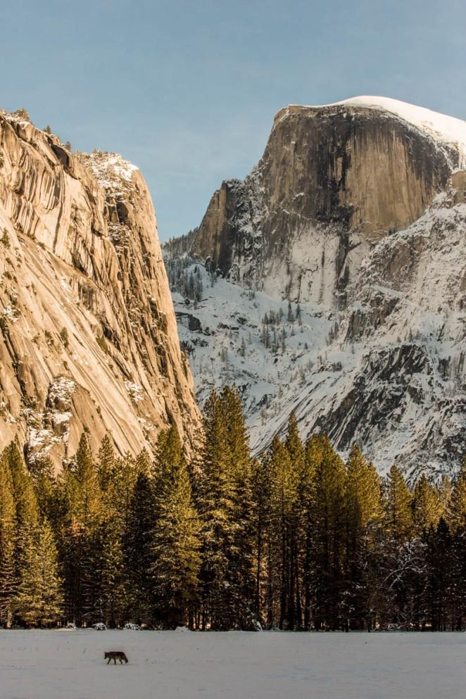 20160108-Yosemite-late-164