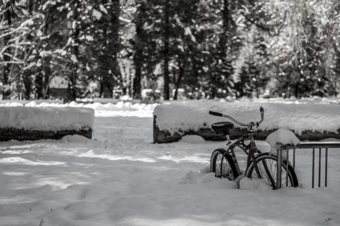 20160108-Yosemite-late-191